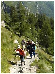 Subito dopo il Belvedere / Foto © rigmar@gmail.com